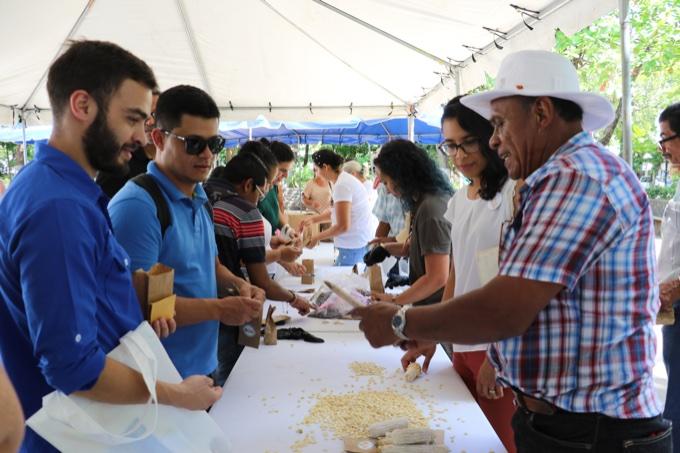 Buscan potenciar conservación y uso de maíz criollo