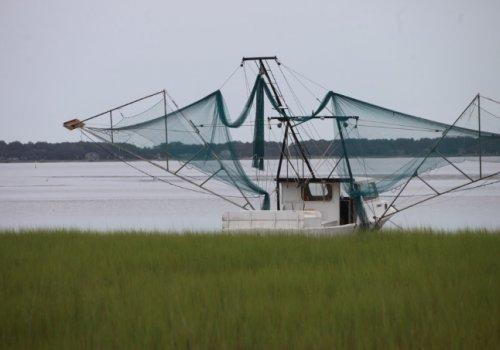 Pronunciamiento Rectoría UNA solicitando el veto a pesca de arrastre