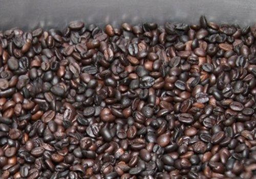 Analizan giro del café hacia industria de torrefacto