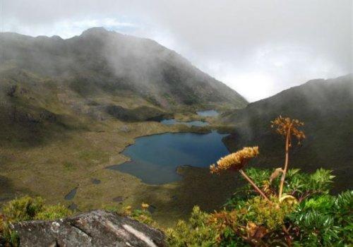Parques nacionales aportan un billón de colones a la economía del país