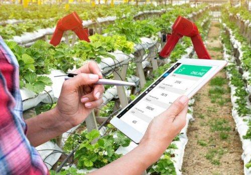 UNA impartirá carrera en ingeniería agroalimentaria