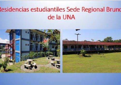 Sede Regional Brunca estrena página Web