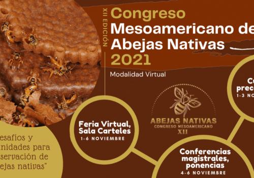 Desafíos y oportunidades para la conservación de abejas nativas