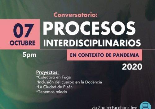 Abordaje de procesos interdisciplinarios durante la pandemia