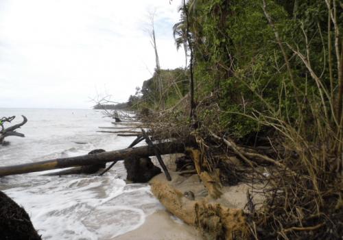 Evalúan erosión costera en el Caribe sur del país