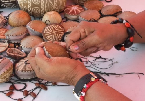 Al rescate de las culturas indígenas