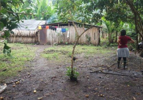 Servicio de salud es una deuda pendiente en el territorio indígena de Alto Chirripó