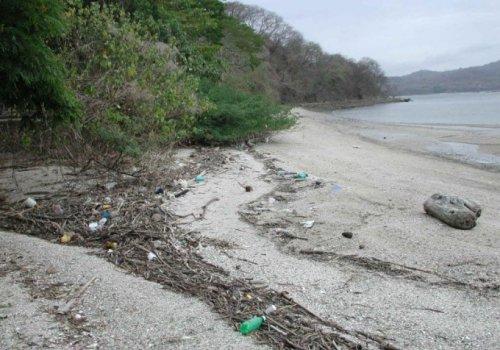 Plásticos asfixian al planeta