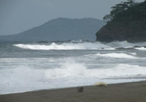 Colombia y las Antillas potenciales focos de maremoto en costas ticas