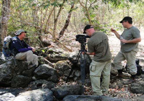 Jaguares ticos bajo el lente de la BBC